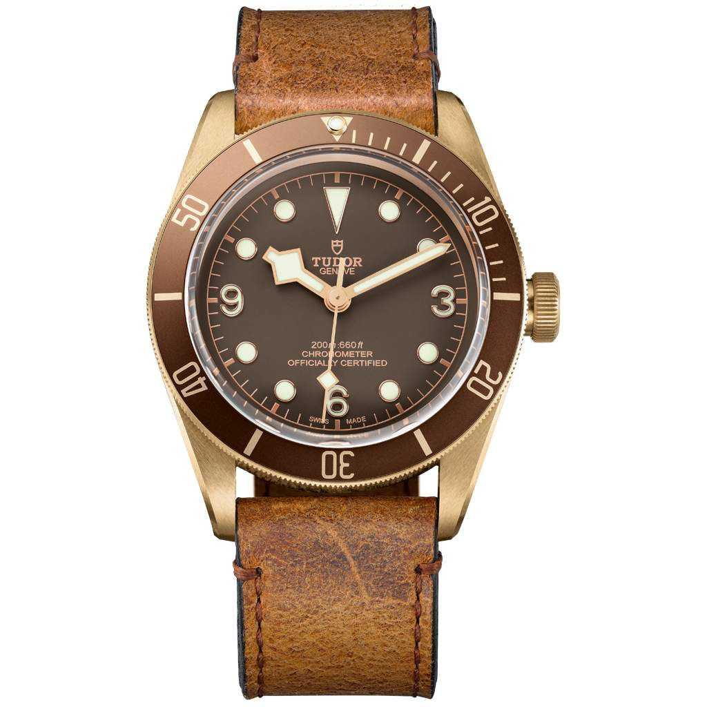 gphg2016_tudor_m79250bm-0001_brown_leather_brown_f_xl_rvb_02.jpg