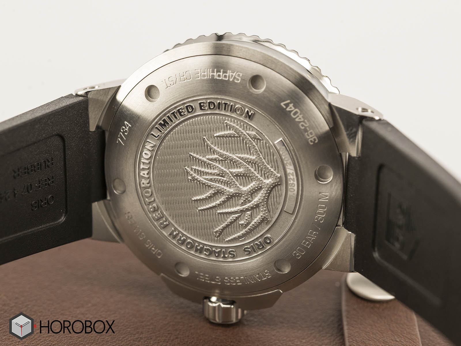 Oris-Staghorn-Restoration-Limited-Edtion-4.jpg