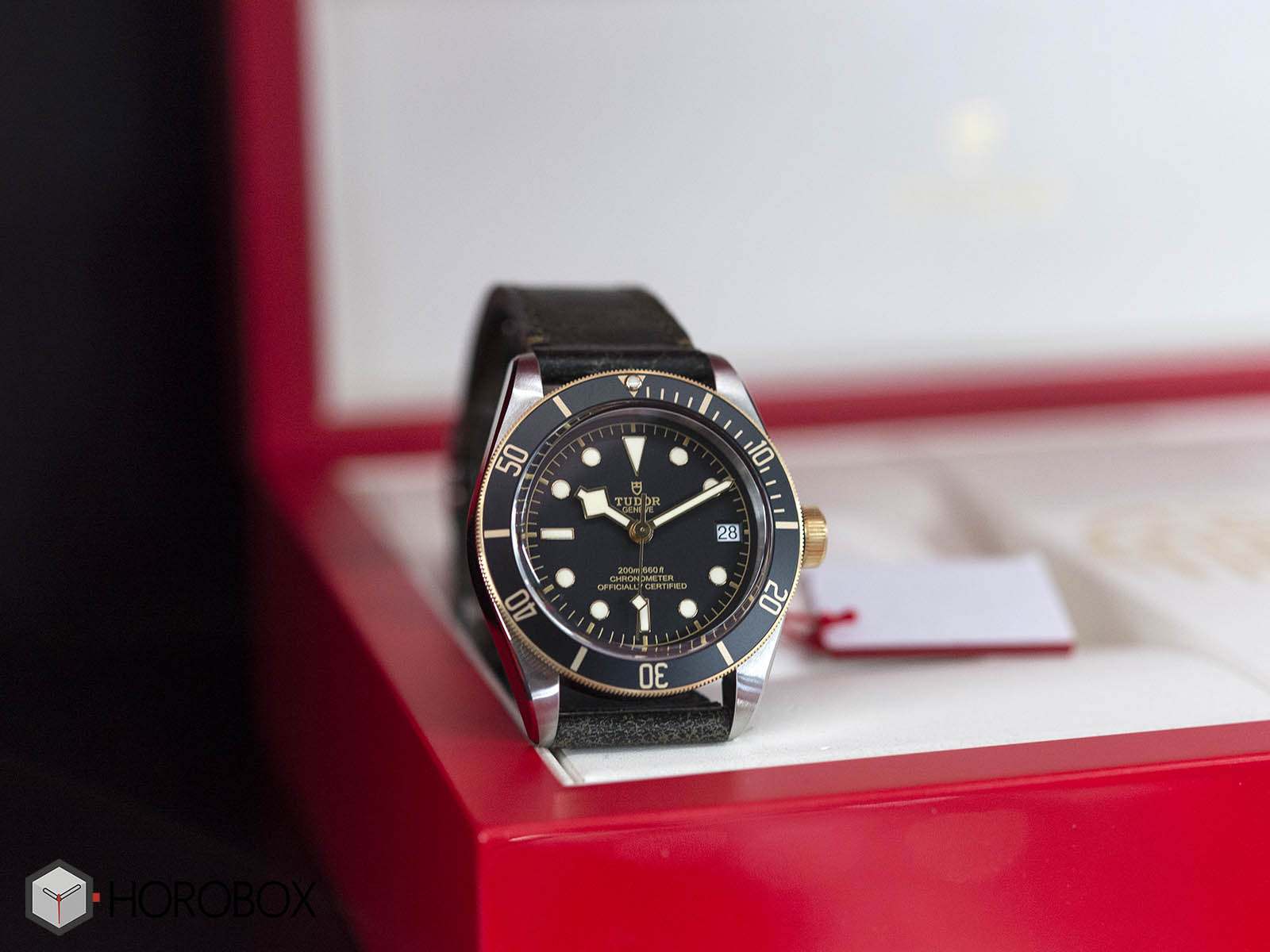 Tudor-Heritage-Black-Bay-Steel-Gold-4.jpg