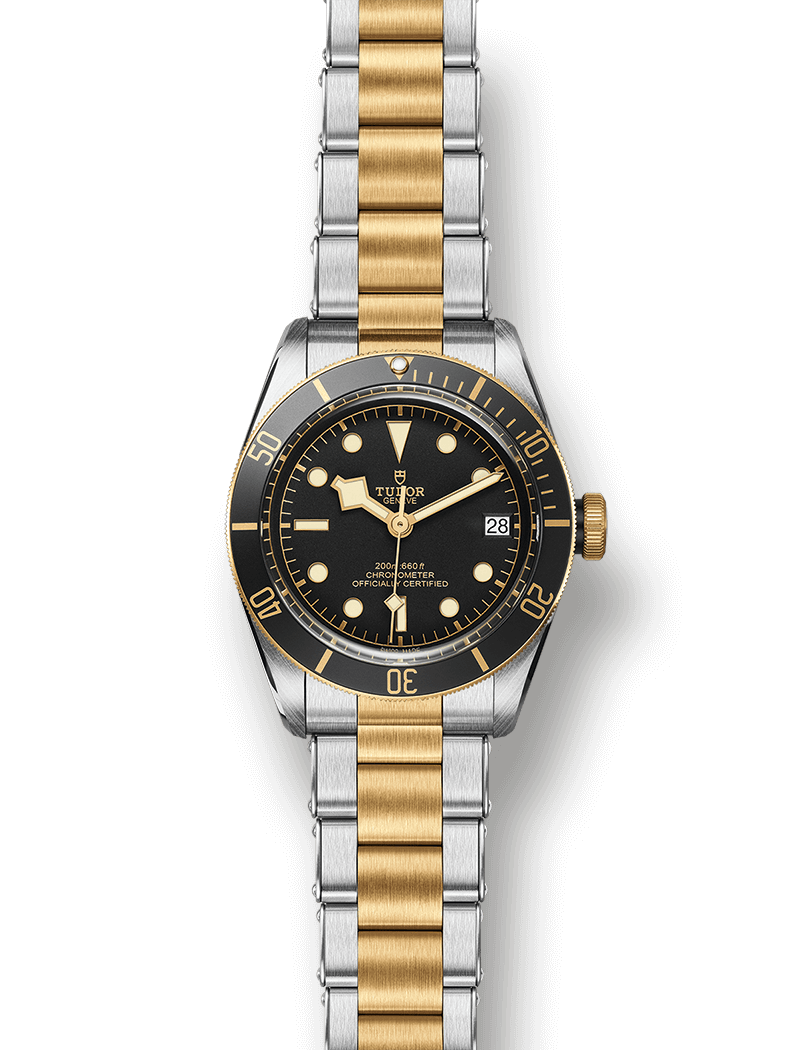 Tudor-Heritage-Black-Bay-Steel-Gold-8.png