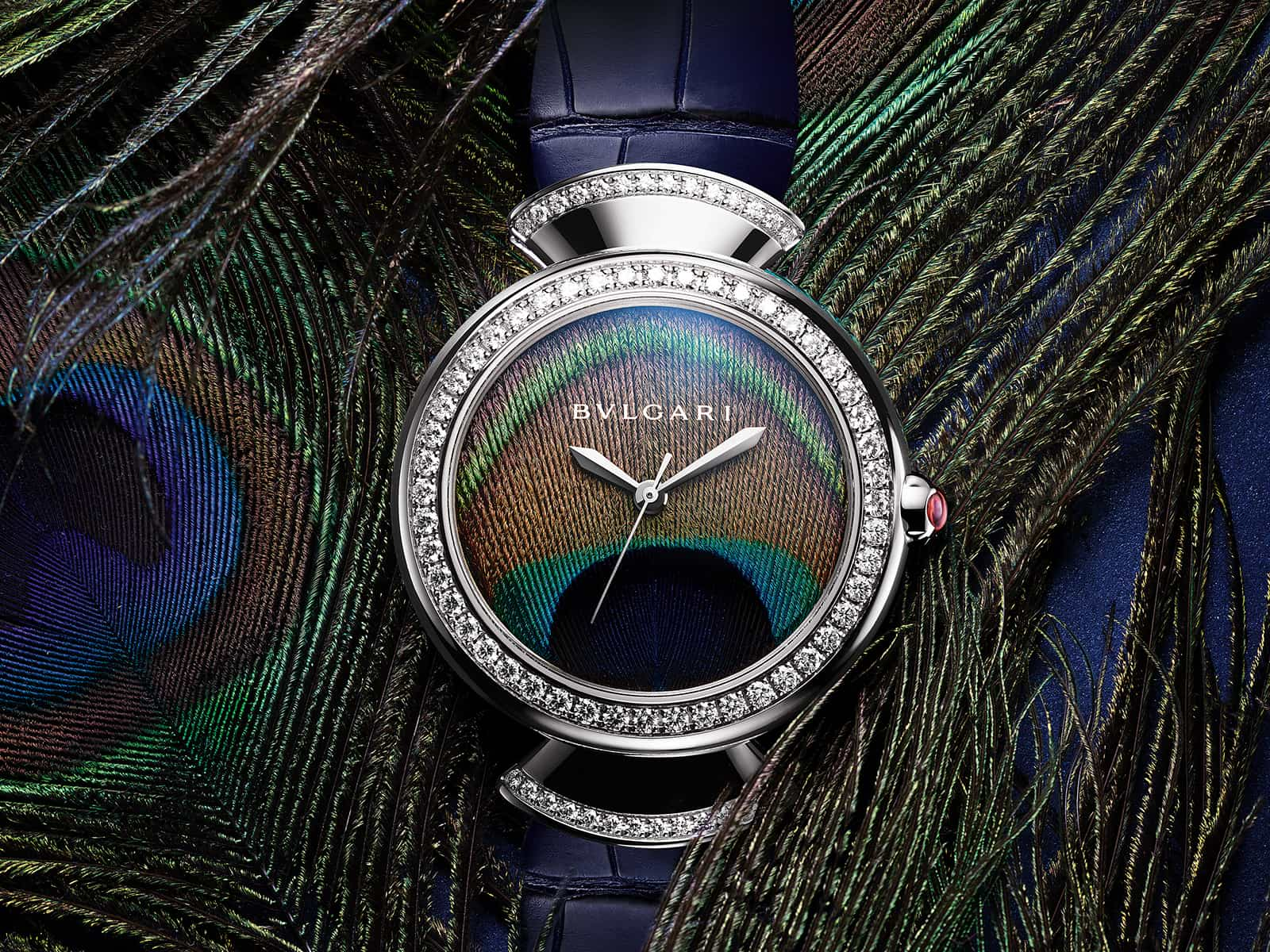 103263-bulgari-divas-dream-peacock-.jpg